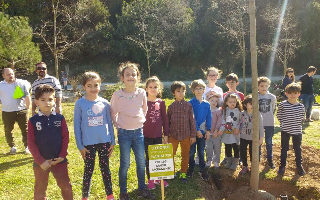 Dia del Medi Ambient: Plantada d´Arbre Escola